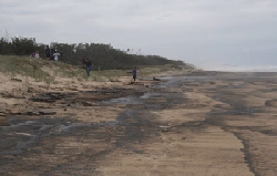 Radio amateurs ondersteunen schoonmaak actie olievervuiling