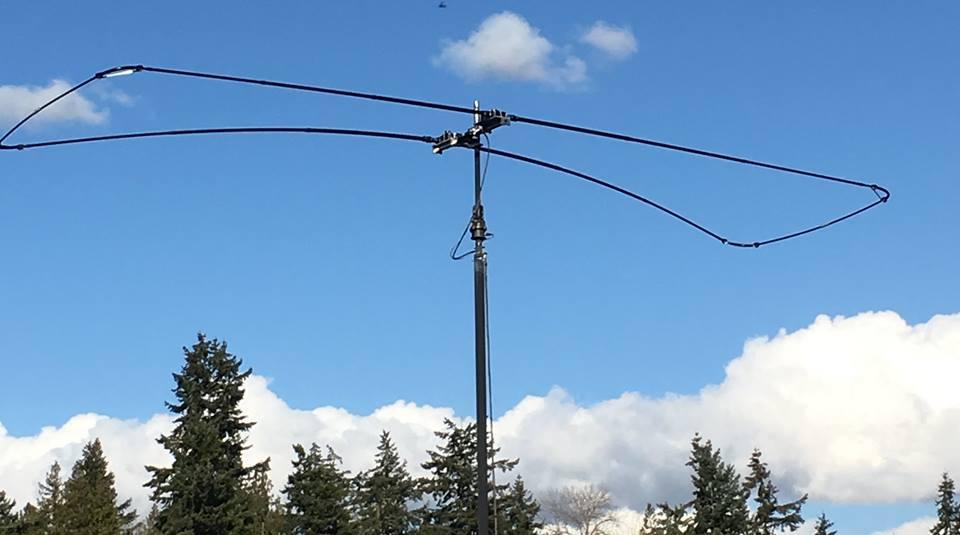 Dikke antenne
